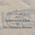 Appreciation Is Key to The Champion Mindset